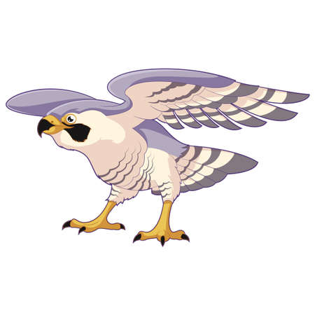 falco peregrinus: Cartoon standing falcon Illustration
