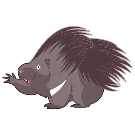 Cartoon happy Porcupine
