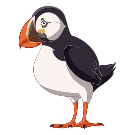 webbed: Cartoon smiling Puffin