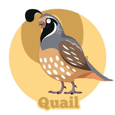 Vector image of the ABC Cartoon Quail Ilustração