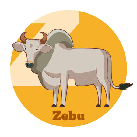 Vector image of the ABC Cartoon Zebu