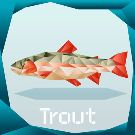 Origami trout banner
