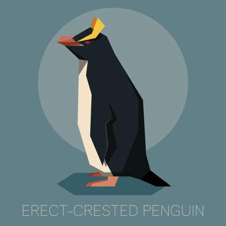 Flat Erect-crested penguin Imagens - 98147757