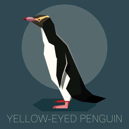 Flat Yellow-eyed penguin isolated on dark background.