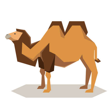 Vector image of the Flat geometrical Bactrian camel