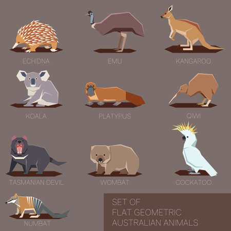 Vector image of the flat geometric icons of species of Australia Illustration