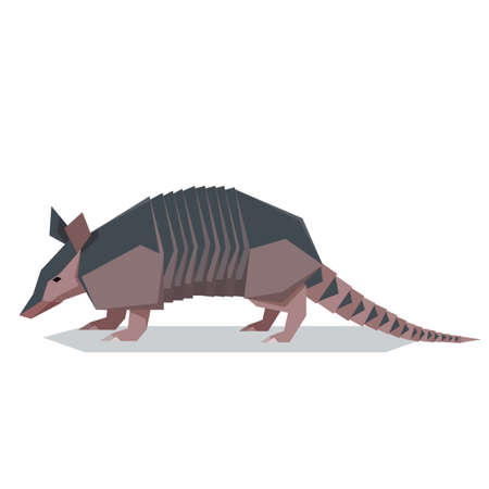 Vector image of the Flat polygonal Nine-banded armadillo illustration.