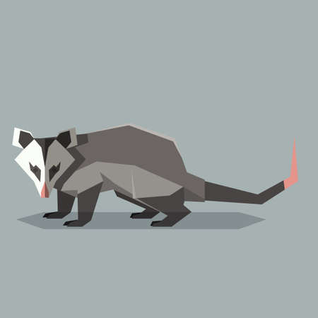 Vector image of the Flat polygonal Opossum