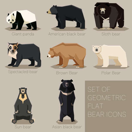 Vector image of the Set of flat geometric bear icons