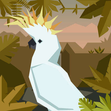 Vector image of the Flat geometric jungle background with Cockatoo