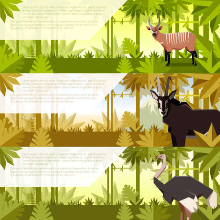 Vector image of the Set of flat banners with african animals antelopes and ostrich
