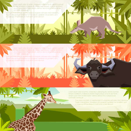 Vector image of the Set of flat banners with african animals aardwark, buffalo and giraffe Illustration