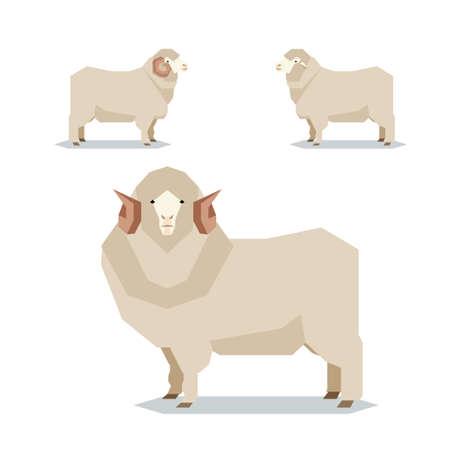 Vector image of the Flat geometric Merino sheep