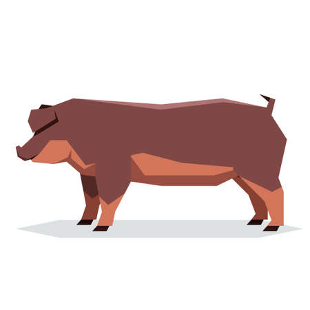Vector image of the Flat geometric Duroc pig Illustration