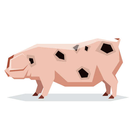 Vector image of the Flat geometric Gloucestershire Old pig