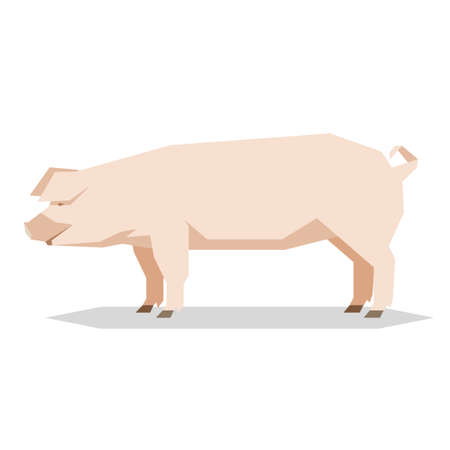 Vector image of the Flat geometric Yorkshire pig