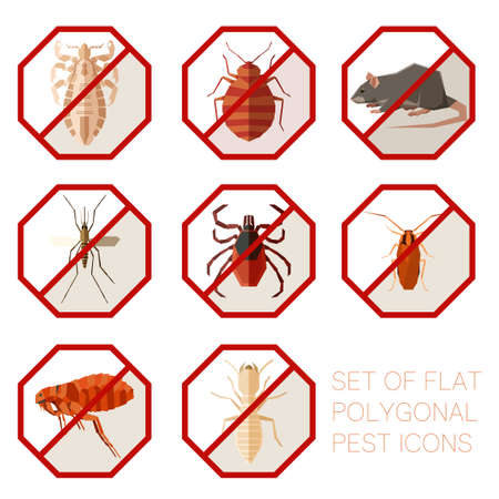 Set of flat polygonal signs of pest icons