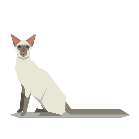 Vector image of the Balinese Cat breed o Иллюстрация