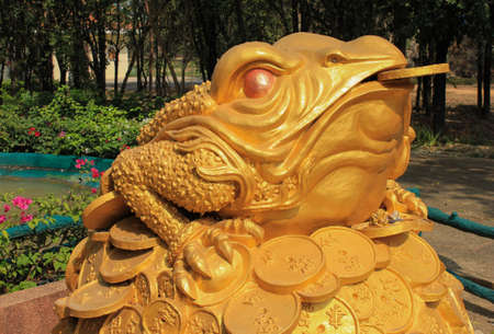 Feng Shui frog hold coin in the mouth sitting on gold money mound photo