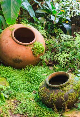earthen: Earthen jar tropical garden decoration Stock Photo