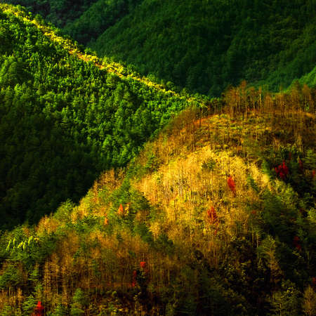 Autumnal Equinox Stock Photo - 4906240