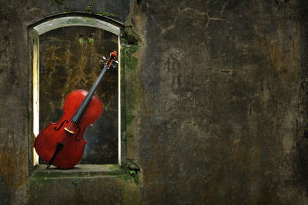 mottled: monuments mottled window and cello 2