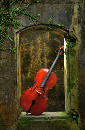 mottled: monuments mottled window and cello 3 Stock Photo