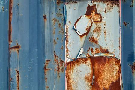 horse like: Rusty art like a horse