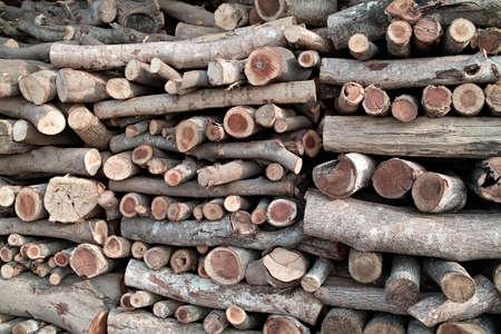woodpile Stock Photo - 4906720