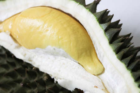 Durian fruit, King of fruits with yellow meat on white background,  Fresh and sweet yellow durian meat for popular tropical fruit background Stock Photo