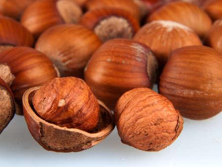 hazelnuts: Avellanas Foto de archivo