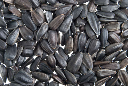 macrobiotic: Sunflower seeds macro background