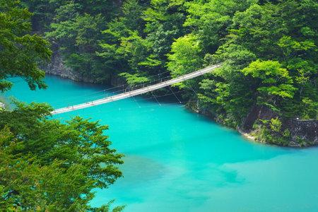 Suspension bridge at Sumatakyo Canyon, Shizuoka Pref., Japan