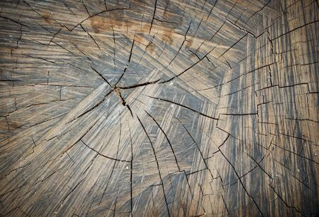 Old Wood Grain Cracks Texture for background photo