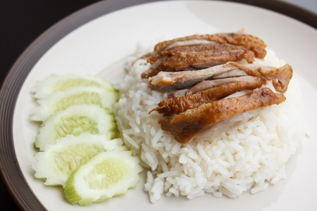 Roast Duck over Rice with cucumber in plate photo