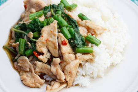 stir fried chicken in holy basil with yardlong bean on steamed rice  Thai food  Stock Photo - 23067571