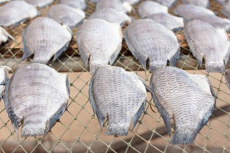 perch dried: Dried Climbing perch fish (preserve food)