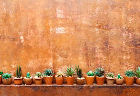 Grunge orange red wall background with flowerpot photo
