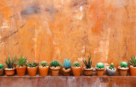 Grunge orange wall background with flowerpot photo