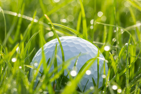 Golf ball on grass with bokeh of drops water