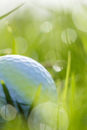 close up of golf ball on grass with bokeh background photo