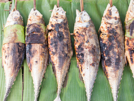 grilled torpedo scad fish - Thai food