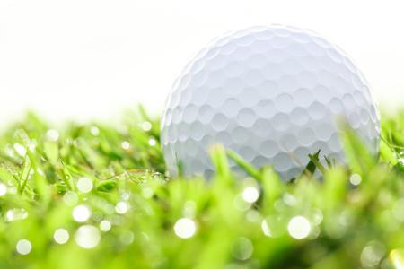 golf  ball: Cierre de la pelota de golf en hierba con el bokeh