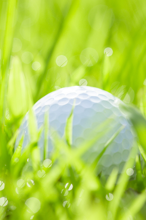 water grass: close up of golf ball on grass with bokeh background