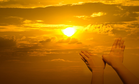 shaped hands: Bird shaped hands on sunset background