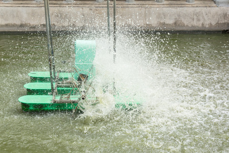 paddle wheel: paddle wheel machine for wastewater treatment on pond