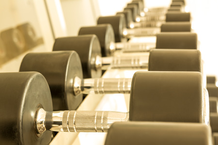Rubbered dumbbell on a rack in the gym