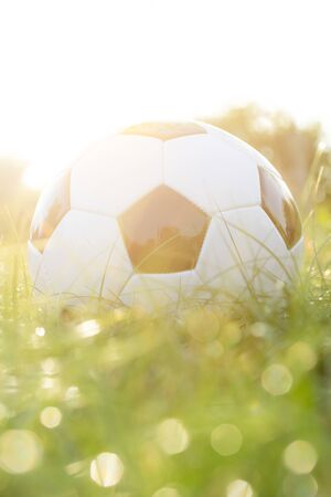 football on grass with bokeh and golden sunlight background Stockfoto