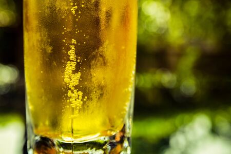 Close-up of lager beer bubbles in glass on green boken background
