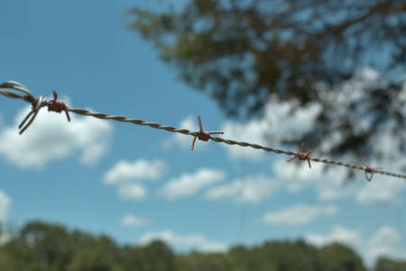 sky is the limit: Barbed wire fence in front of blue sky